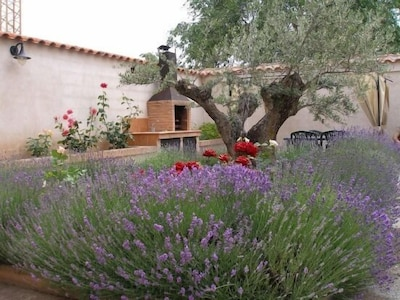 Muduex, Kastilien-La Mancha, Spanien