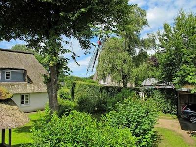 Naturzentrum, Bredstedt, Schleswig-Holstein, Germany