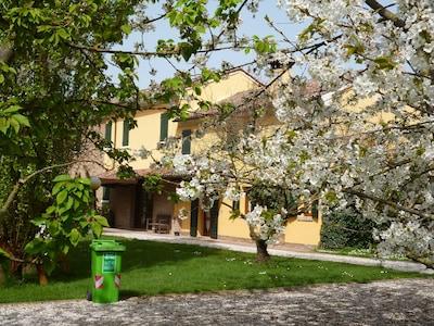 Bagnolo di Po, Veneto, Italy