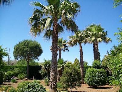 Casa nel verde ad un passo da Gallipoli e spiaggia
