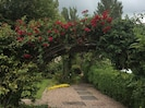 The 'Wedding Arch', popular wedding photography spot at Umry Lodge.