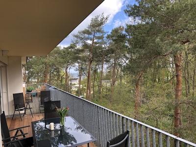 Überdachte Terrasse mit Blick in den Küstenwald