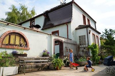 Auer, Moritzburg, Saxony, Germany