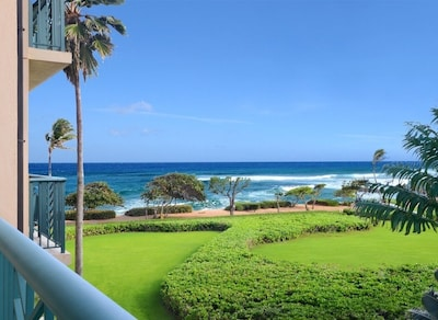 Bedroom Lanai Ocean View. Start every morning with a Tropical Smoothie from Here