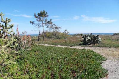 À la sortie du jardin, l'accès piéton à la plage.