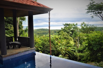 View from Pool