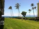 View From your lanai.. Just walk along the grass to the beach!