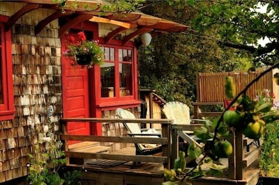 Orchard Cabin - A Cozy Cabin in a Peaceful Orchard Close to Ganges.