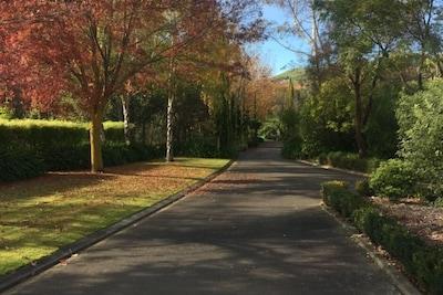 Driveway into Ambury House