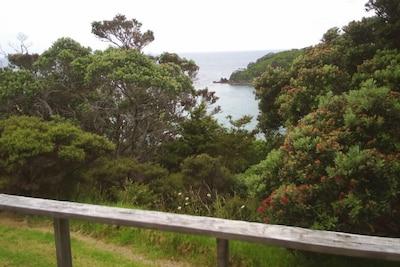 Moureeses Bay, Whananaki, Northland, New Zealand