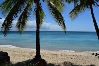 Speightstown, Saint Peter, Barbade