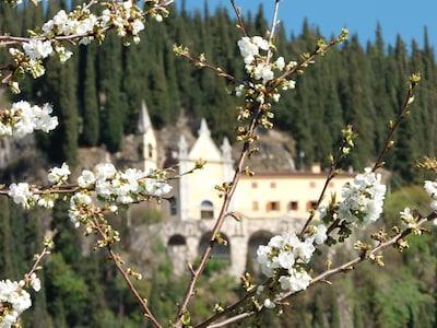 Weingut Serègo Alighieri, Sant'Ambrogio di Valpolicella, Veneto, Italien