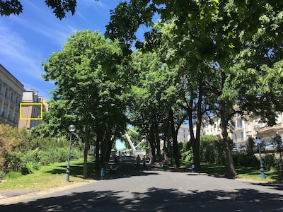 Apartment is located at the top of the park and on the Allees Paul Riquet.