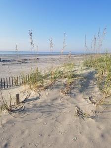 Sand dunes at beach entrance