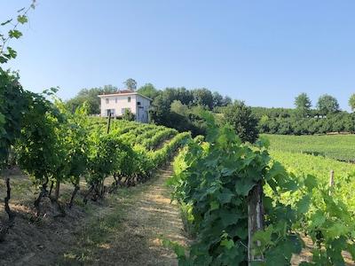 San Defendente, Canale, Piedmont, Italien