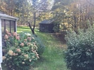 Side and back yard with painting studio, in the spring/summer