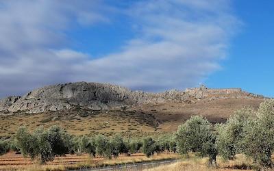 Musée de l'huile d'olive, Mora, Castille-La Manche, Espagne