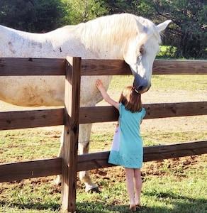 Our horses love treats!