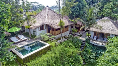 Mambo, Luxury 2 Bedroom Villa, Near Ubud