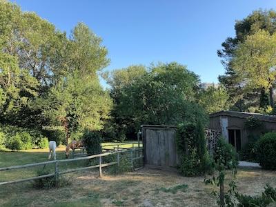 La Cabane de la leque, dans le parc des Alpilles en pleine nature.