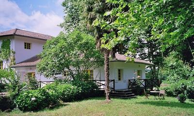 Moulin vu du jardin