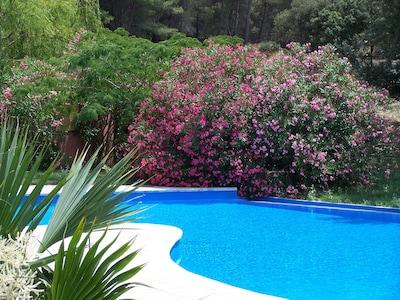 piscine du Mas de Joseph