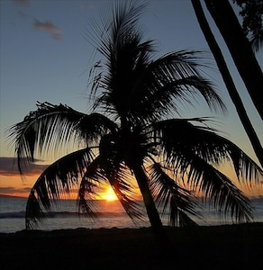Lava Fields, Kihei, Hawaii, United States of America