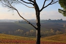 View in the Fall from the Zibibbo bedroom, over hills, vineyards and mountains.