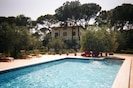 The 6m x 13m swimming pool is surrounded by the olive grove.