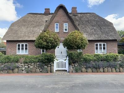 Risum-Lindholm, Schleswig-Holstein, Allemagne