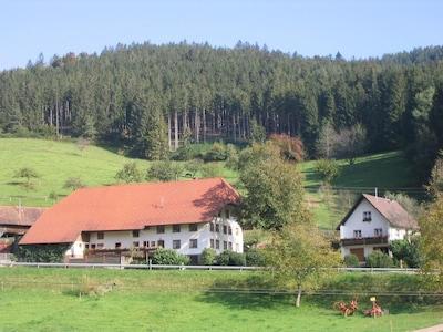Blick auf den Bauernhof