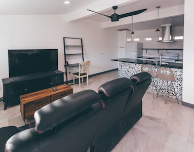 Living Room and Open Kitchen (looking from front door)