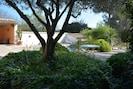 Le solarium depuis l'olivier