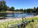 Rivière la Dordogne à 250m du Manoir