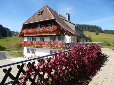 Josenmühle