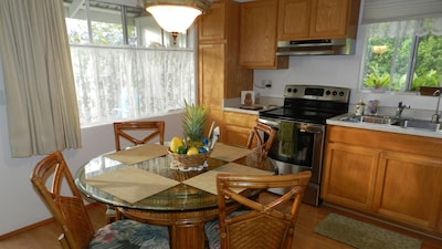 Glass-flat-top oven range. Large, airy windows surround; no on-looking (privacy)
