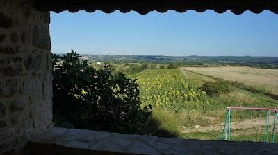 Une vue depuis la terrasse du gite l'Olivier