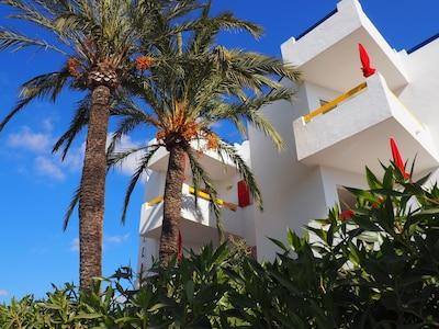 Apartamentos Mallorca S.L: