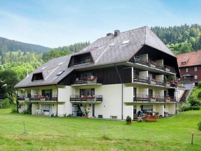 Bernau Ski Area, St. Blasien, Baden-Württemberg, Germany