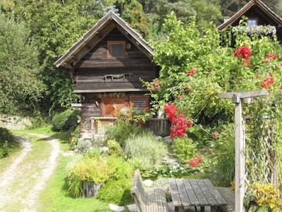 Pilzmuseum in Treffen, Treffen, Kärnten, Österreich