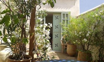 Garden on the roof terrace: jasmine, bougainvillea, laurel, fruit trees ...