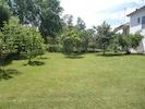 Front yard/ garden