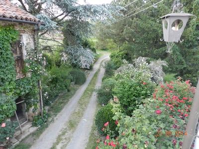 Vesime, Piedmont, Italy