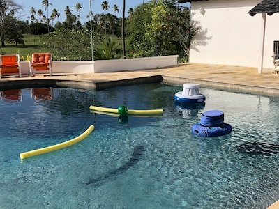 Relax in the pool.