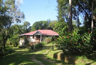 Boiling Lake, Delices, Saint Patrick Parish, Dominica