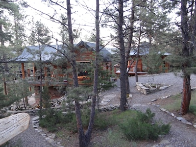 Cabins in the woods.  Cabin 7  & The Bathhouse.
