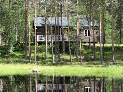 Saelenfjaellen's Moose Park, Lima, Dalarna County, Sweden