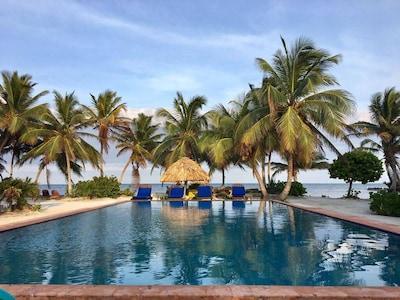 Indigo, San Pedro, Belize District, Belize