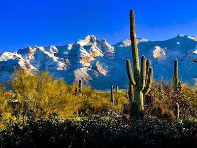 Catalina Foothills Estates, Catalina Foothills, Arizona, États-Unis d'Amérique