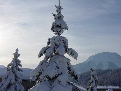 Ausblick vom Garten im Winter